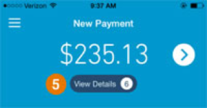 GoPayment view details